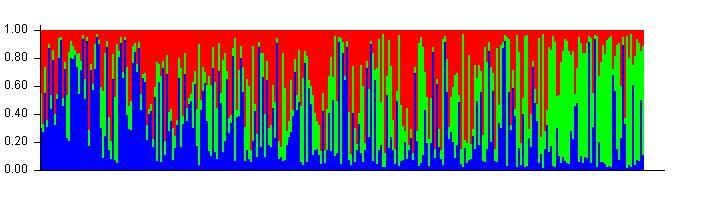 Structure_24_plot.jpg