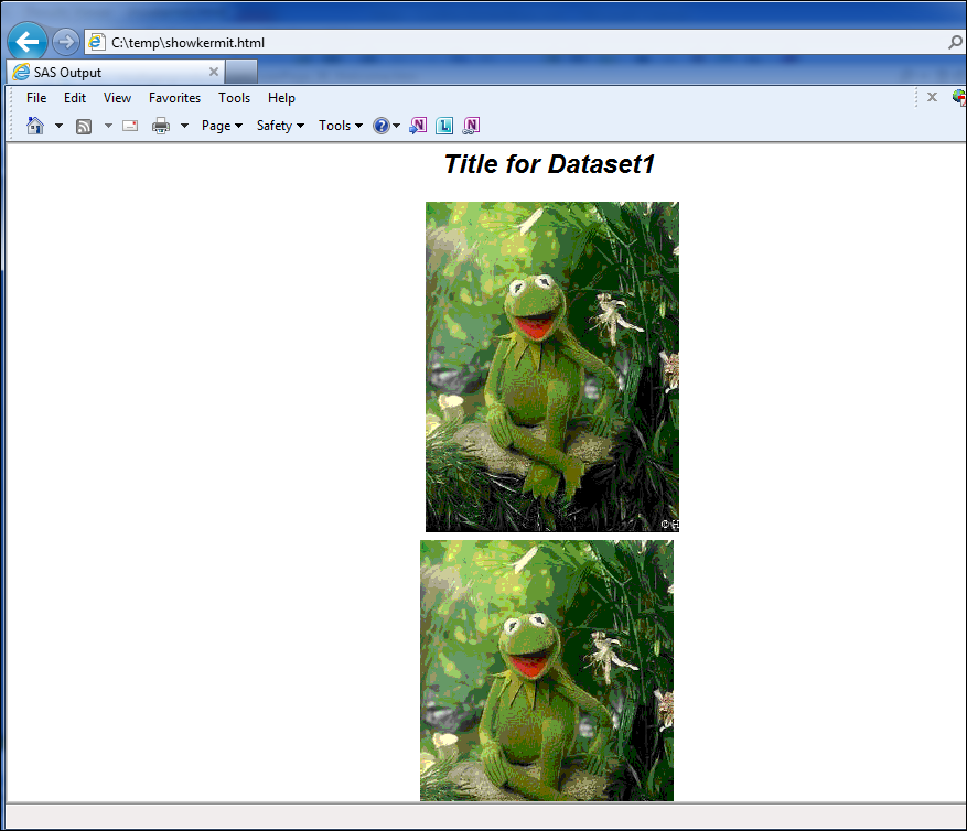 html_with_kermit.png