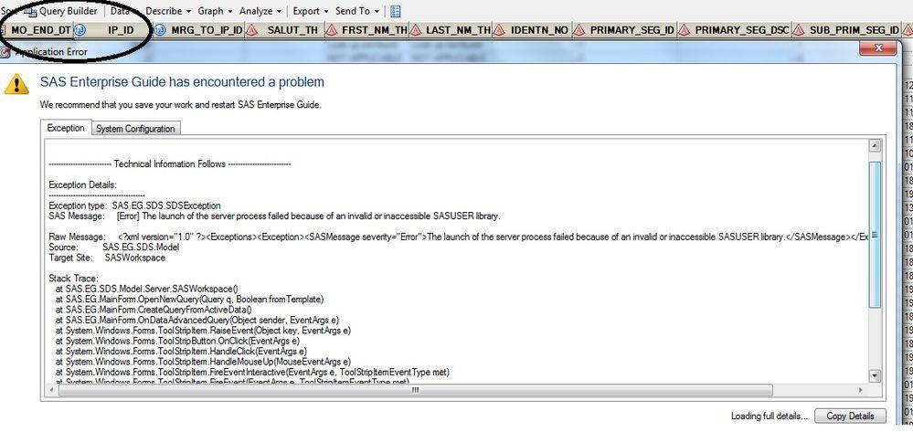 Error-SAS EG.jpg