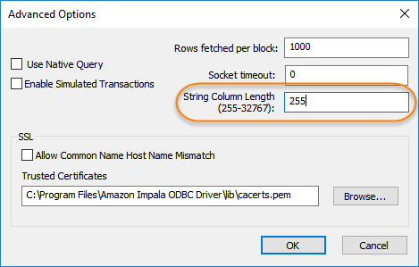 Solved: SAS/Access Hadoop String Columns - Field Length Op