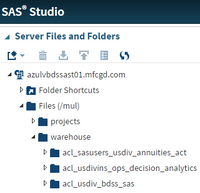 SAS file path