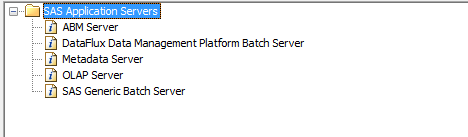 New SAS Application Server Component Wizard.png