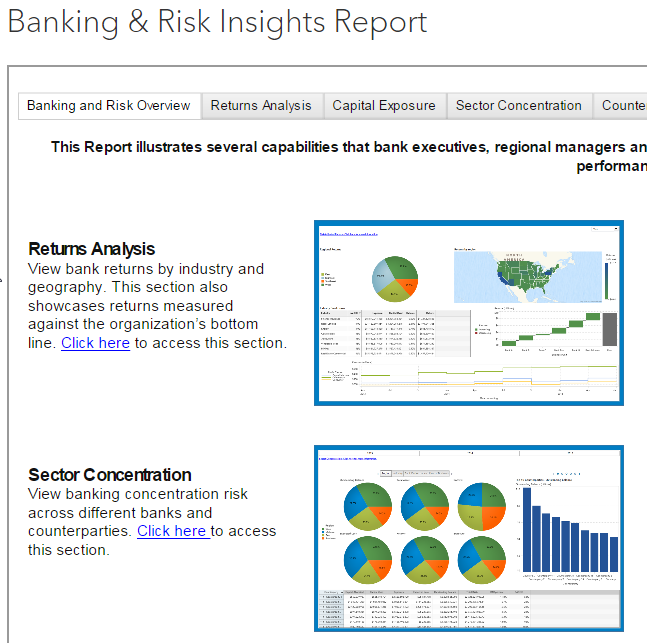 Banking & Risk Insights Report _ SAS.png